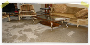 dry-wet-carpets